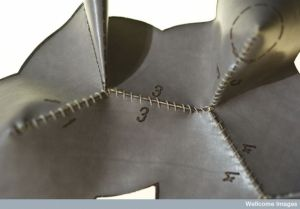 Limberg2(detail of model)